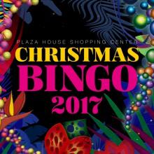 BINGO2017_アイコン